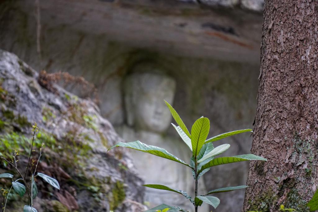 The Lingyin temple in Hongzhou.