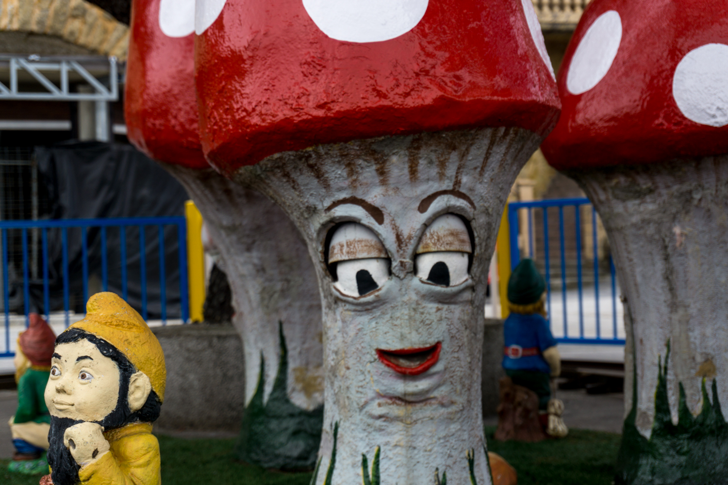At least the mushrooms were having a good time on top of Mount Igueldo